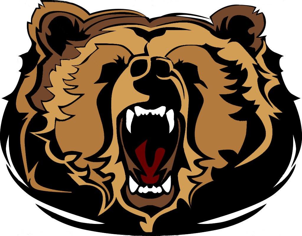 """Хоккейный клуб """"Медведь"""""""